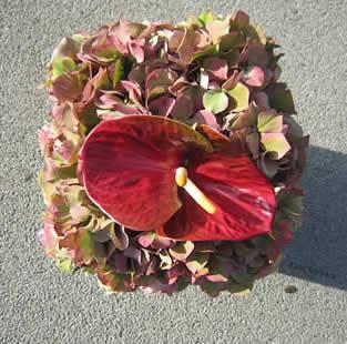 Hydrangea in combinatie met rozen en Anthurium