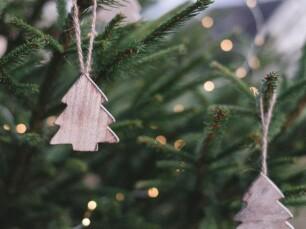 kerstboom optimale verzorging