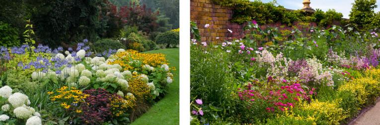 Tuin met complementaire kleuren - Harmonieuze plantenborder