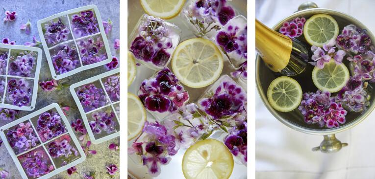 Geraniumbloemen invriezen als decoratie bij drank