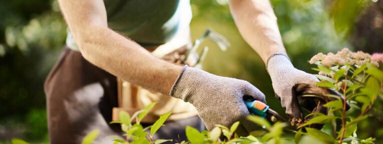 Werken met kwalitatief tuingereedschap