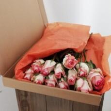 Geschenkdoos Juliette - Rozen wit/roze
