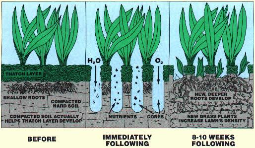 principe van beluchten van gazon