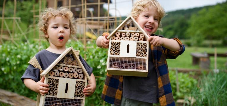 Hang een insectenhotel op in de tuin.
