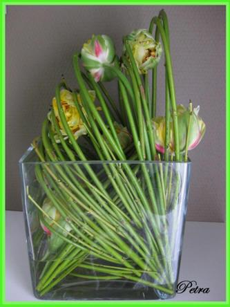 techniek om takken te klemmen bij het bloemschikken