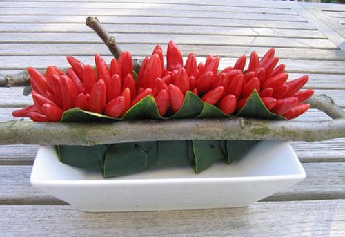 bloemschikken met pepers