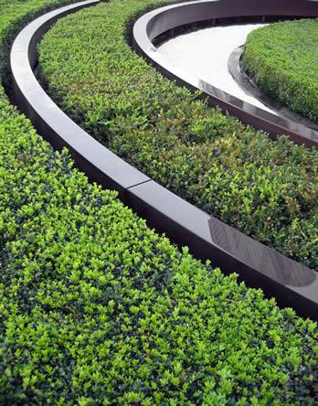 strakke lijnen moderne tuin