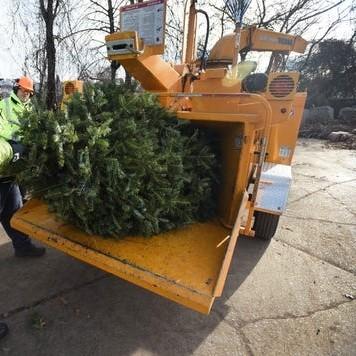 kerstboom versnipperen - recyclage kerstboom