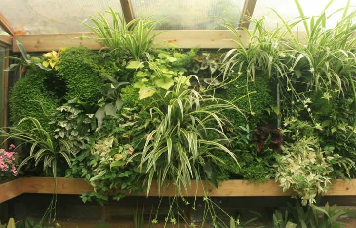 constructie van verticaal tuinieren