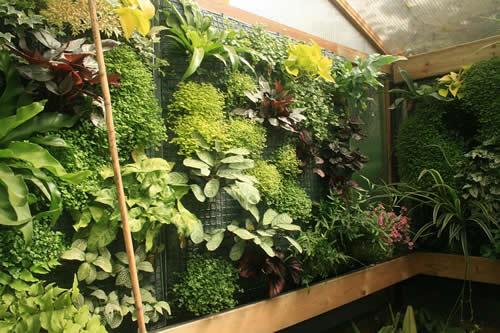 eigen experiment met verticaal tuinieren