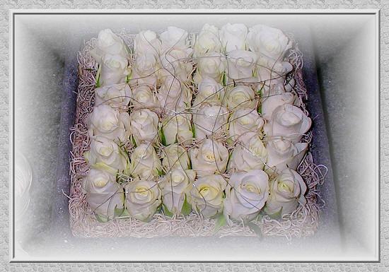 bloemschikken met rozen