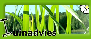 Tuinadvies: d� best bekeken tuinsite van Belgi� & Nederland