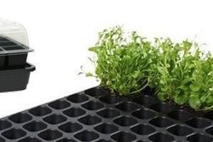 Opstart van de groentetuin, kweeksystemen voor hobby en professioneel!