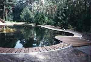 Vijver soorten vijvers voor in de tuin tuinvijver vormen for Tuinvijvers aanleggen