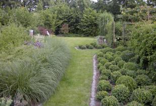 Tuinaanleg: zelf je tuin ontwerpen tuinplan tekenen rekening houden