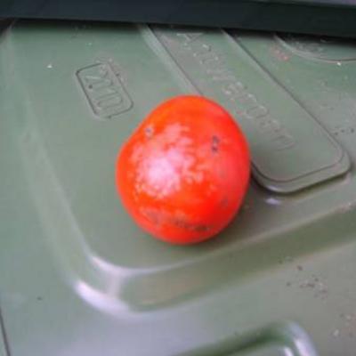 Tomatenvraagje