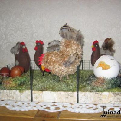 Kippenhok voor binnenhuis