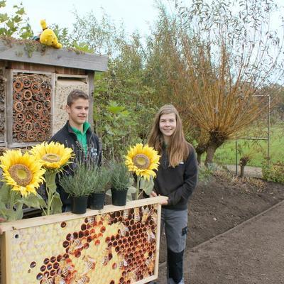 4de West-Vlaamse Plantendag - meer bloemen voor bijen