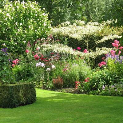 """Open tuin """"De Houten Verdommenis"""""""