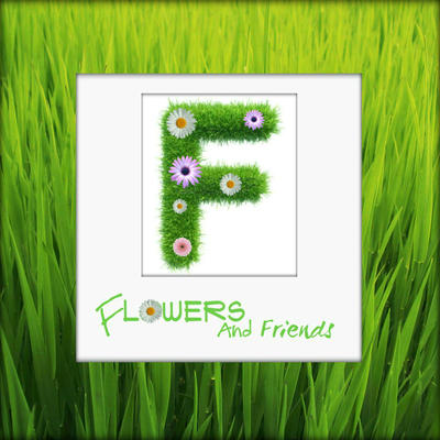 Workshop bloemschikken bij u thuis