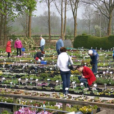 Uitnodiging open tuindag kwekerij 'De Gentiaan'