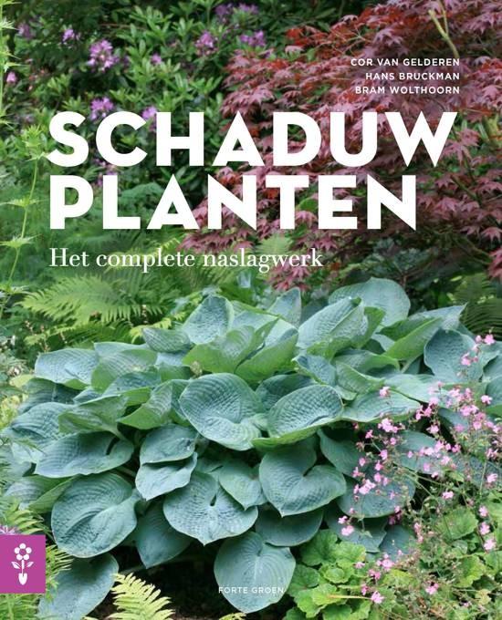 Schaduwplanten door Cor van Gelderen