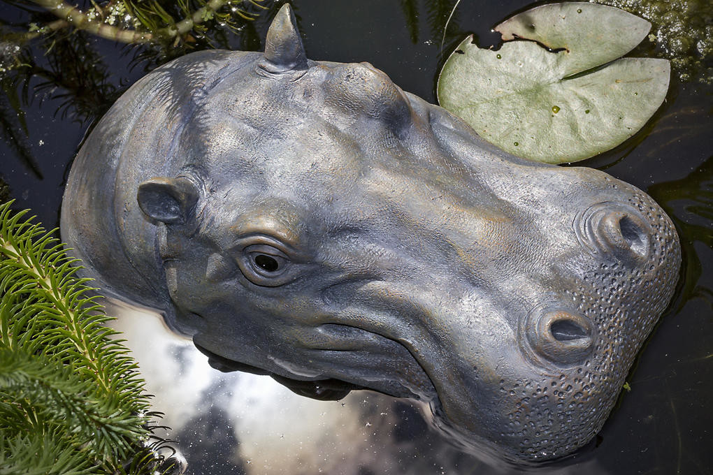 Nijlpaard als vijverdecoratie