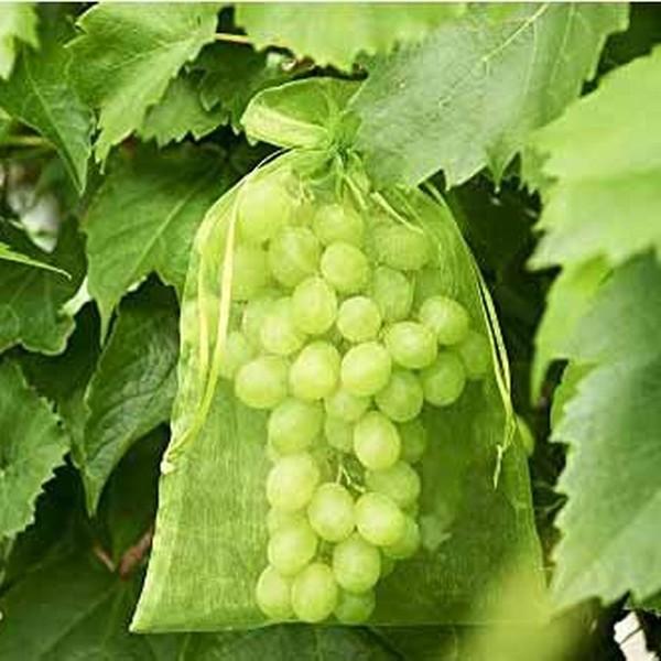 Fruithoes met trekkoord 20 x 30 cm