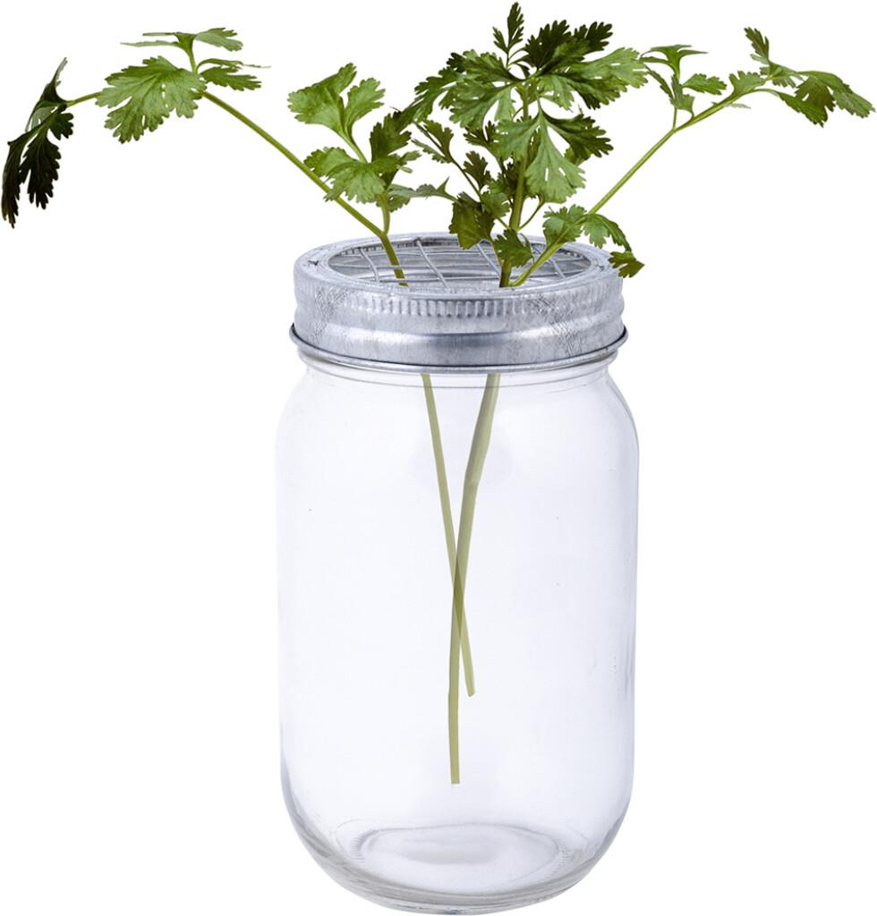 Glazen bloemenvaas JAR met schikdeksel