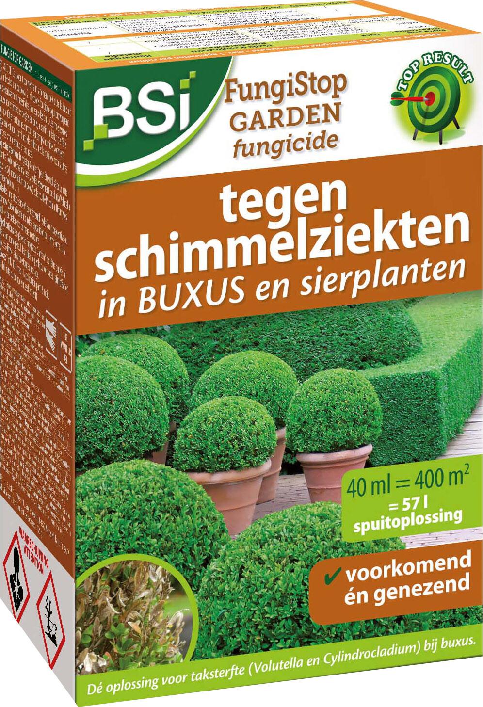 Buxusschimmels genezen en voorkomen400 m2