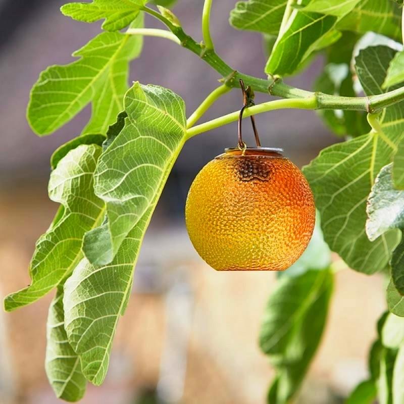 Appelsien als tuinlicht solar
