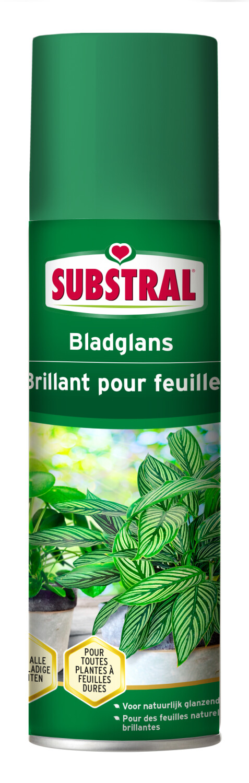 Bladglans Substral 250 ml