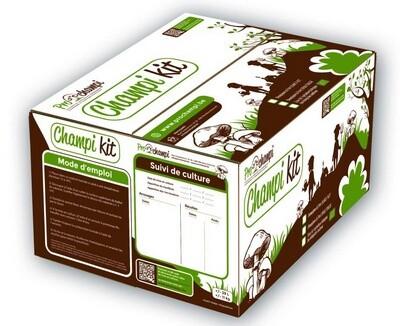 Bruine champignons Champi kit BIO