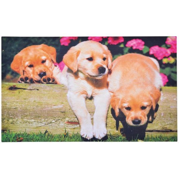 Deurmat puppies