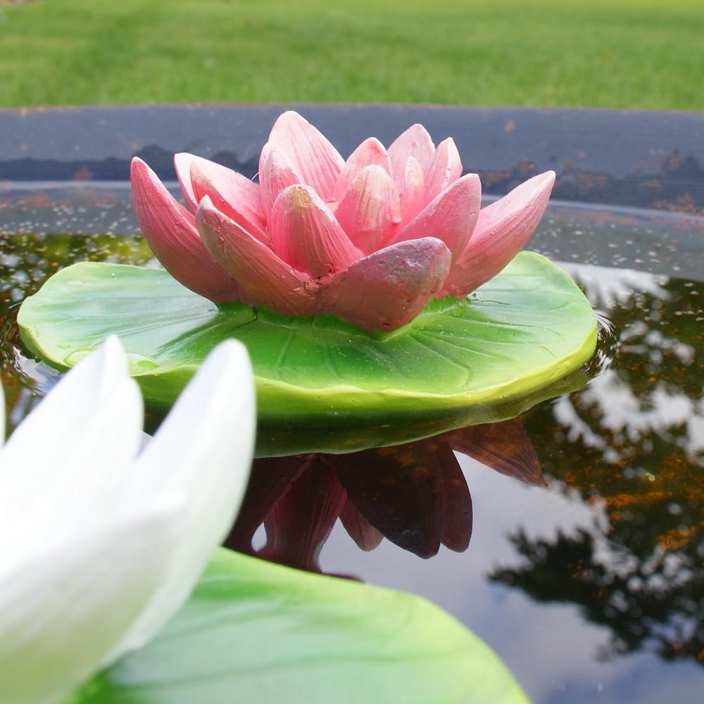 Waterlelies drijvende vijverdeoratie