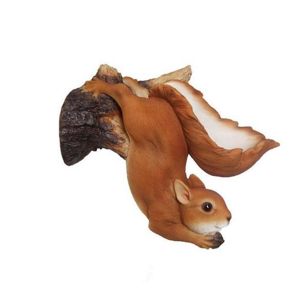 Eekhoorn hangendwandvoederschaal