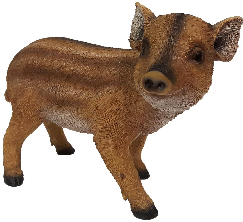 Everzwijn big Fritz