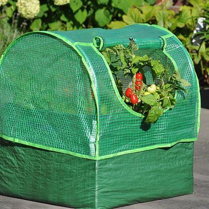 Foliekas voor balkontomaten of tuinkruiden