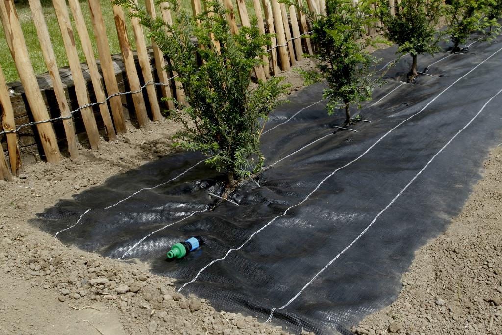 Watersol2 in 1 gronddoek 125 x 10 meter