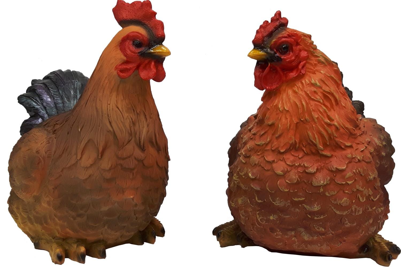 Haan en kip zittend duo