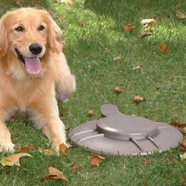 Hondendrolverwerker metaal