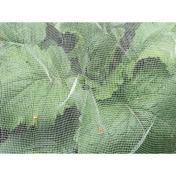 Insectengaas tegen koolvliegen etc366 cm x 600 cm