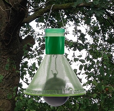 Insectenvaldazen wespen en vliegen tot 100 m2