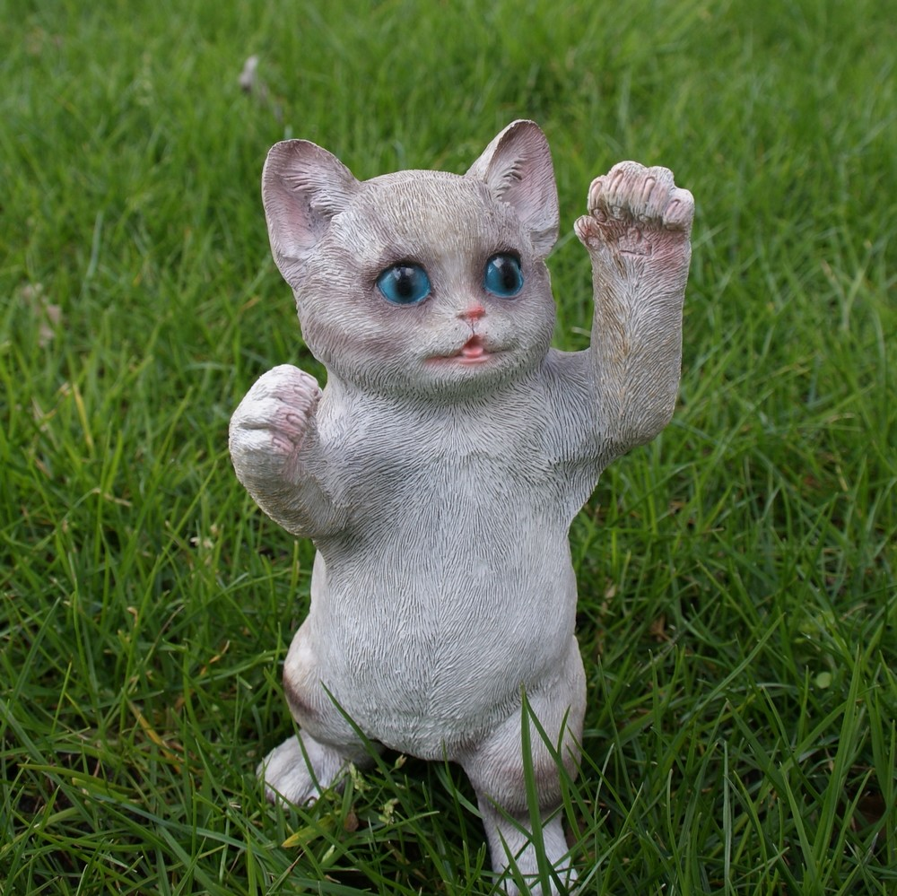 Kat met spelende pootjes