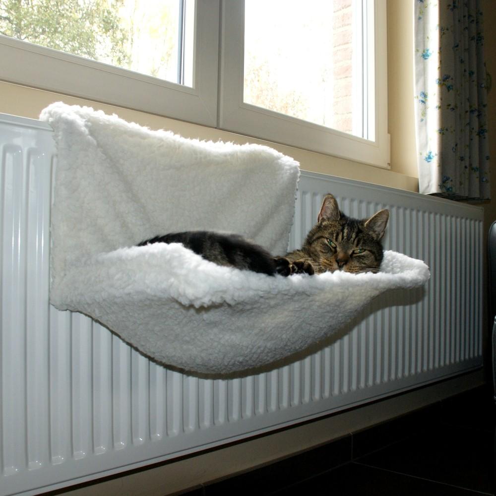 Radiatorbed kat