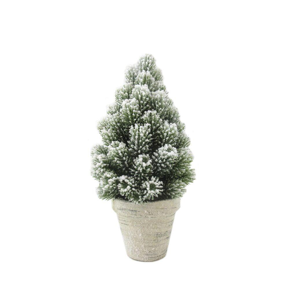 Kerstboom in pot 30 cm
