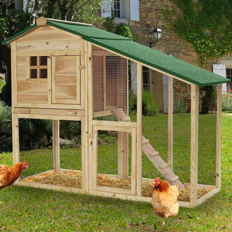 Kippenhok met uitloopren2 kippen