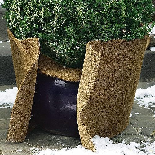 Kokosvezelmat 150 x 50 cm