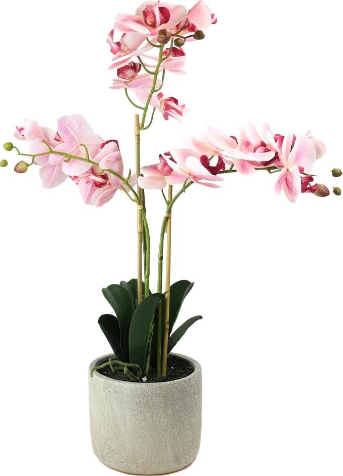 Kunstplant Phalaenopsis orchidee 3 takken witroze