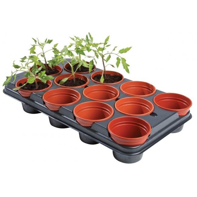 Tray met 12 ronde potten van 11 cm